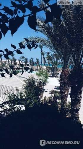 отель зефир тунис джерба отзывы 2019
